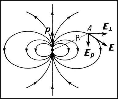 симметричный тороид