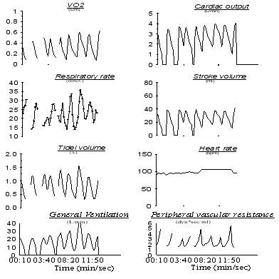 Периодическое изменение параметров системыв обмена меболических газов (кровообращения и дыхания) у больного с тяжелым поражением системы кровообращения