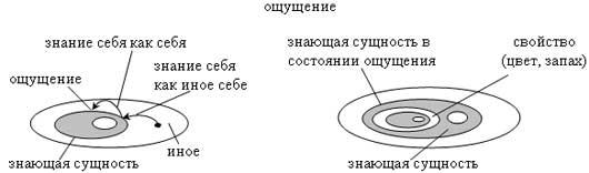 Рис. 4. Эйдетические изображения ощущения.